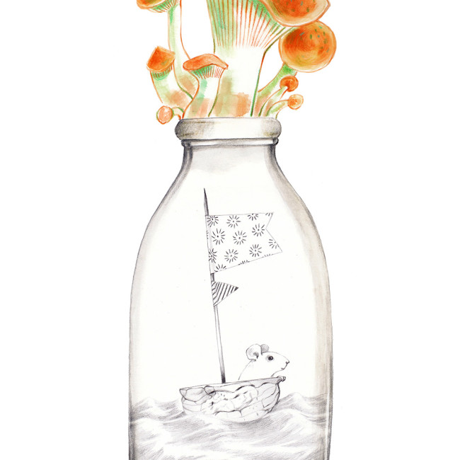 Mushrooms on the cap of a bottle of milk. Inside there is a little world: a mouse that sails in his nutshell. The bottle is part of a collection assembled by a child.