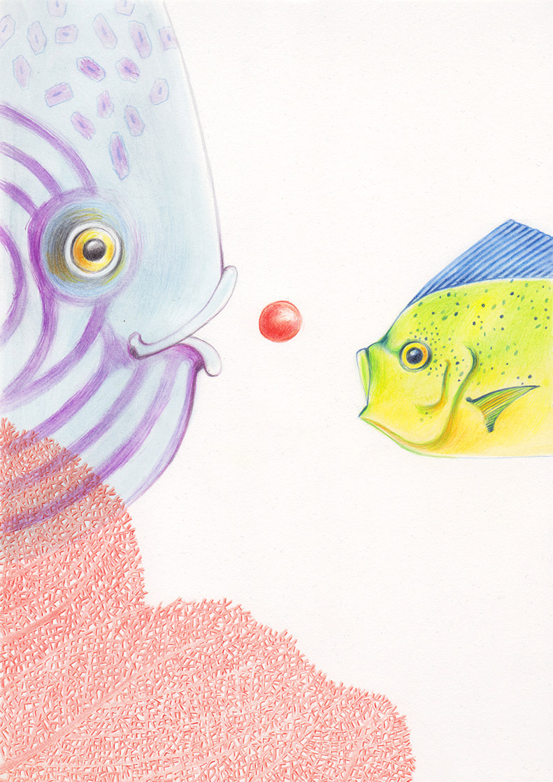 Two colorful fish, behind a red coral, are trying to catch a red ball that is about to rise to the surface. Illustation from a book project which is entitled Rae's gift
