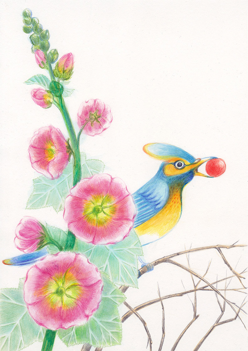 A blue and yellow bird, standing on the branches, among althea flowers, is holding in its beak a red ball. Illustation from a book project which is entitled Rae's gift