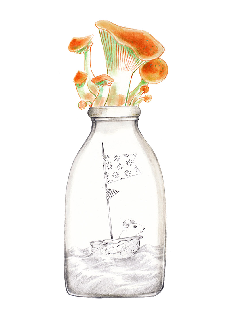 Mushrooms on the cap of a bottle of milk. Inside there is a mouse that sails in his nutshell. The bottle is part of a collection assembled by a child. Illustration for a book entitled