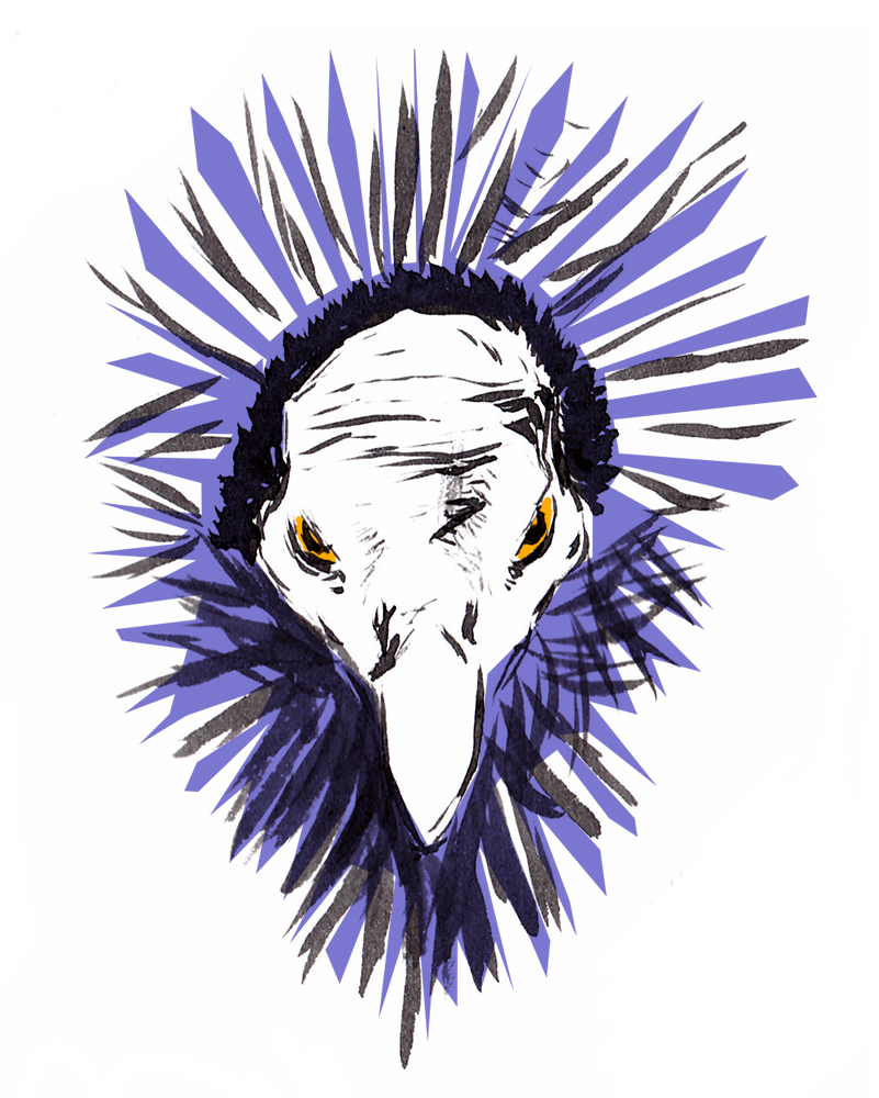 Ink drawing of a guinea hen, digital colored