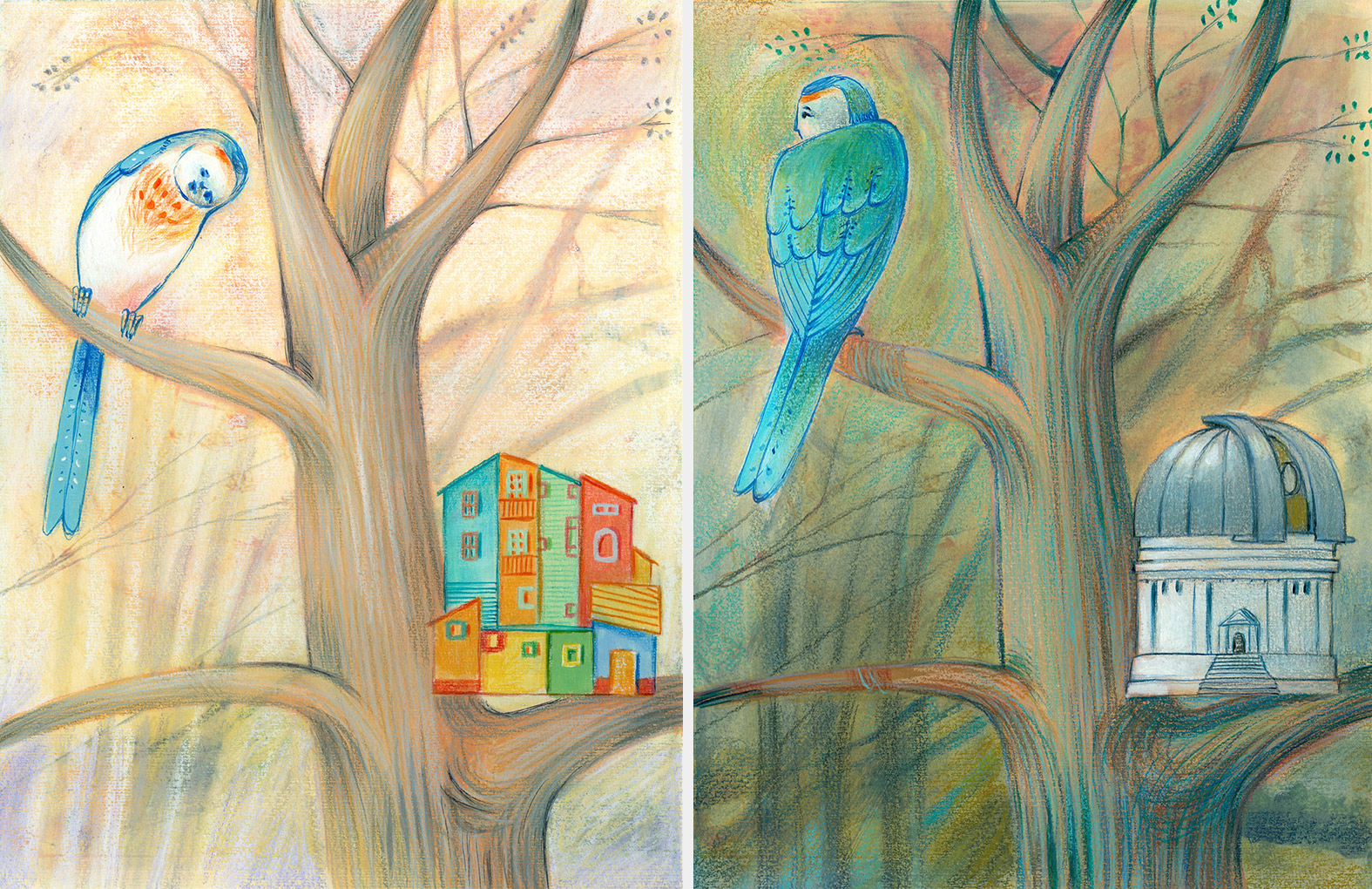 Two illustrations of a bird which has built the wrong houses, one is an observatory and the other is a colored house like the ones at El Caminito. He has to learn to build the nest