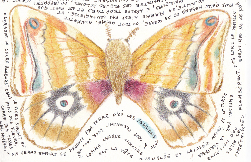 Postcard with a butterfly surrounded by the words of a poem
