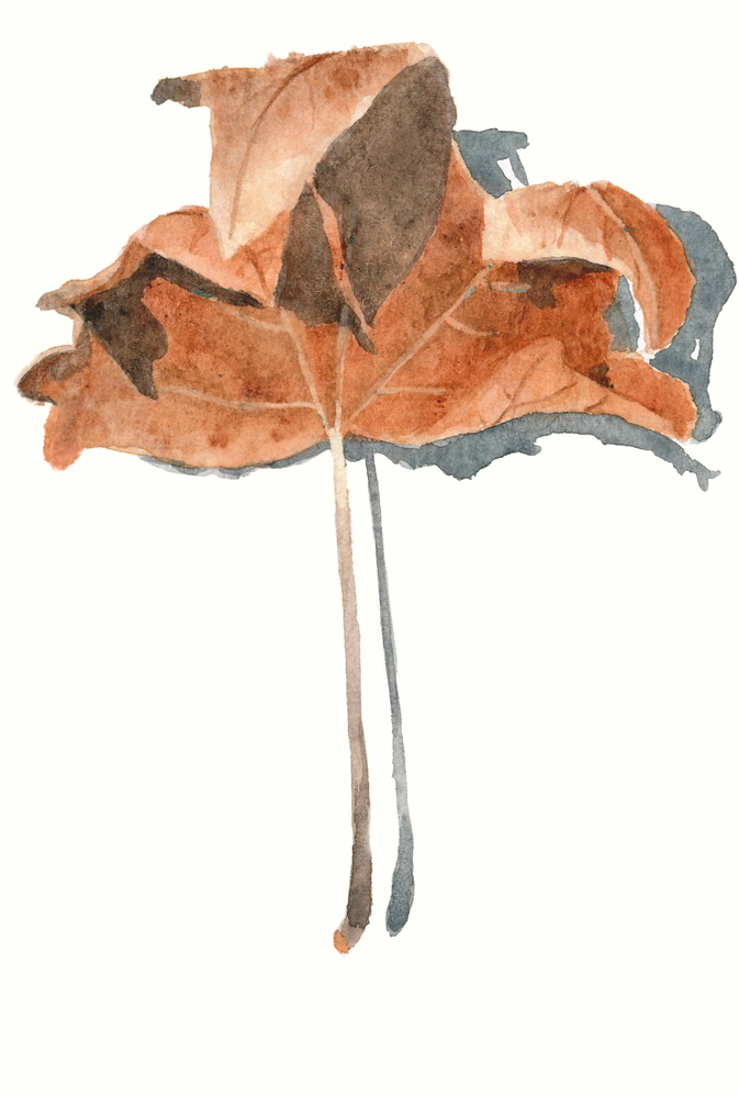Vertical postcard with an autumn leaf